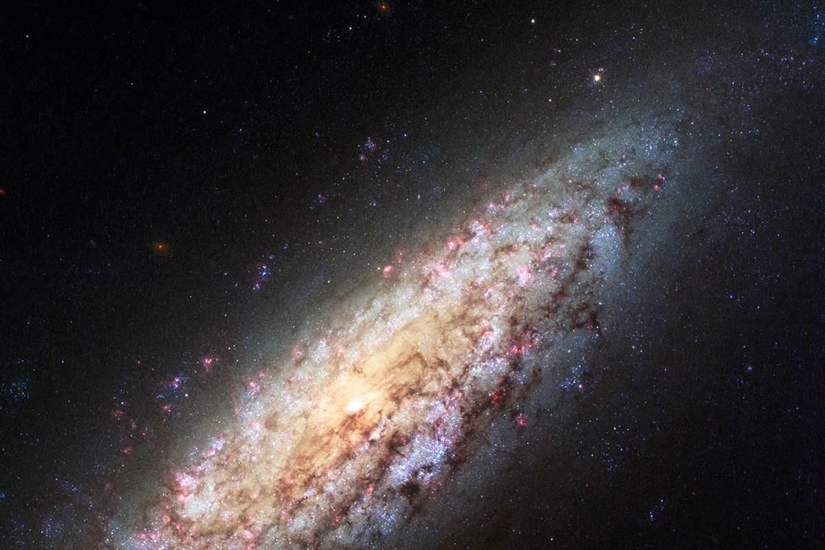 """Hubble fotografa le immagini image della Galassia solitaria """"Lost in Space"""" NGC 6503"""