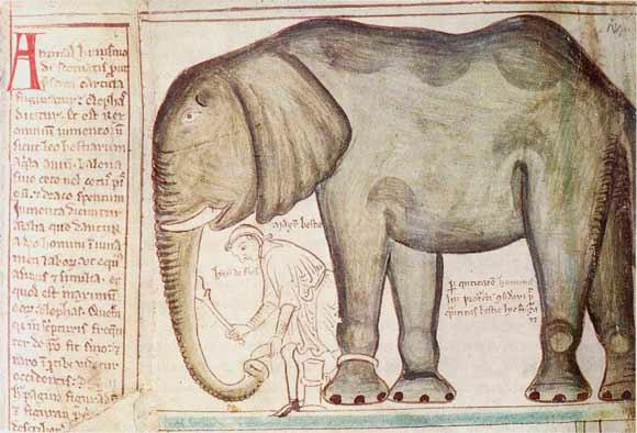 @aptronym @BiblioDeviant Medieval elephant houses and Matthew Paris being discussed at #Strangecreatures @GrantMuseum http://t.co/7VFOZ7iox5