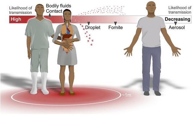 Transmisión por contacto versus por aerosoles #Ebola #microMOOC http://t.co/Wy7WUwUkl6
