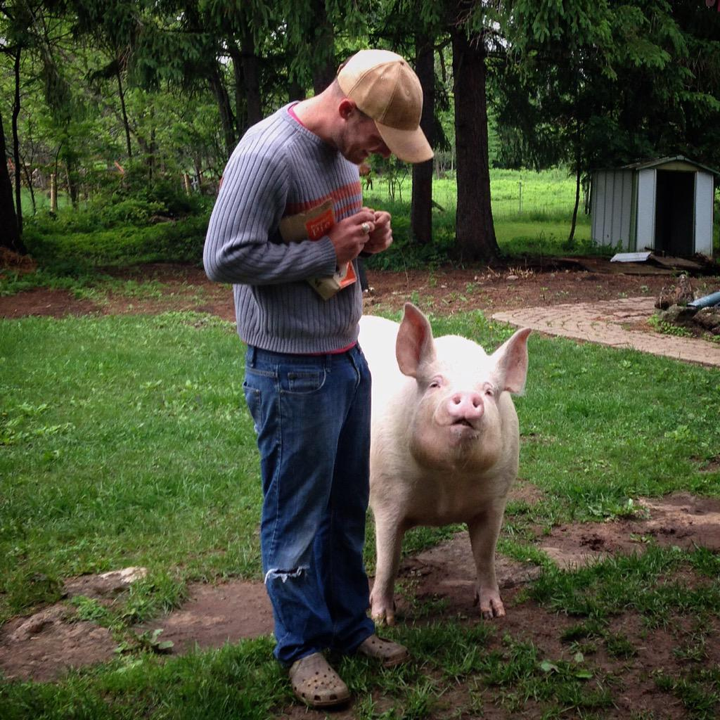 A fun time volunteering with a lot of great people at Happily Ever Esther Sanctuary Farm and meeting @EstherThePig http://t.co/cCMisSsh0y