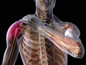 Symptoms of a Torn Rotator Cuff - http://t.co/jPTnj8Xp7M