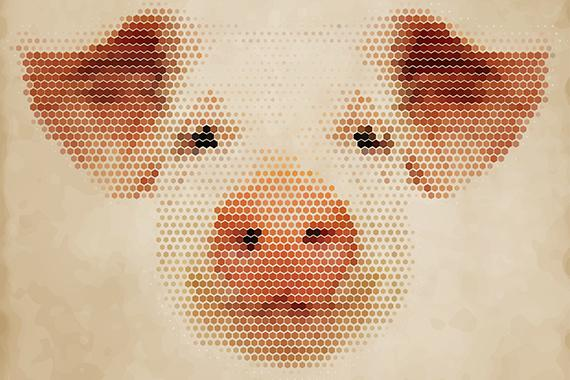 """The Next Pig Idea"" Worth a read. Tristram Stuart &team are changing... the world! http://t.co/sfoVx6XgWZ @Feeding5k http://t.co/JXO8npXZiQ"