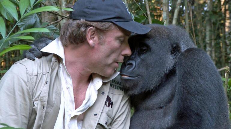 Damian Aspinall e il gorilla Kwibi si abbracciano dopo 10 anni