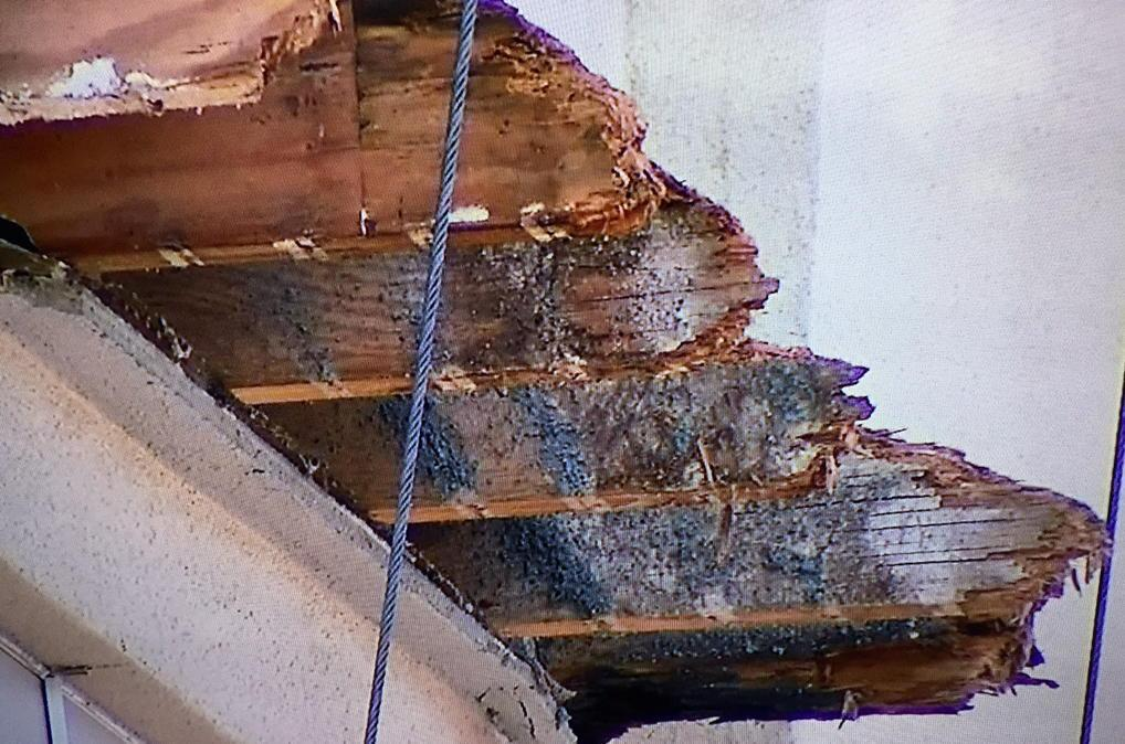 There are the rotted joists in #BerkeleyBalconyCollapse http://t.co/3IknYiLDxZ