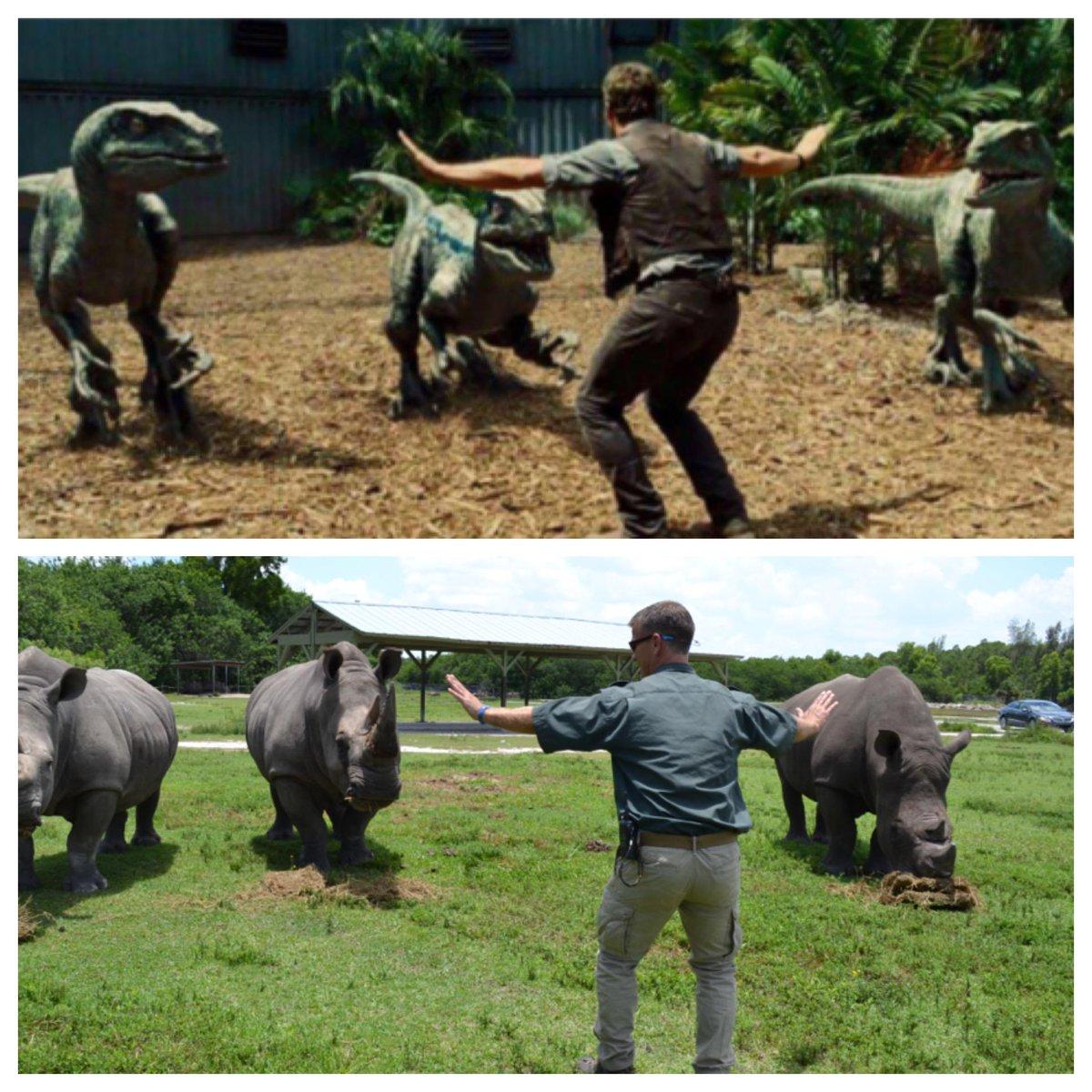 Cười đau bụng với hình ảnh nhái phim Jurassic World của các nhân viên vườn thú - 77708