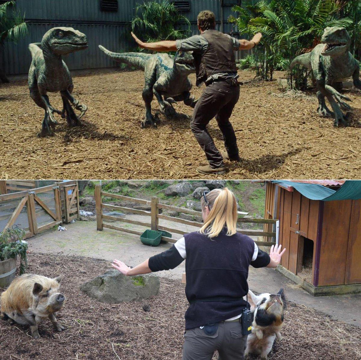 Cười đau bụng với hình ảnh nhái phim Jurassic World của các nhân viên vườn thú - 77707