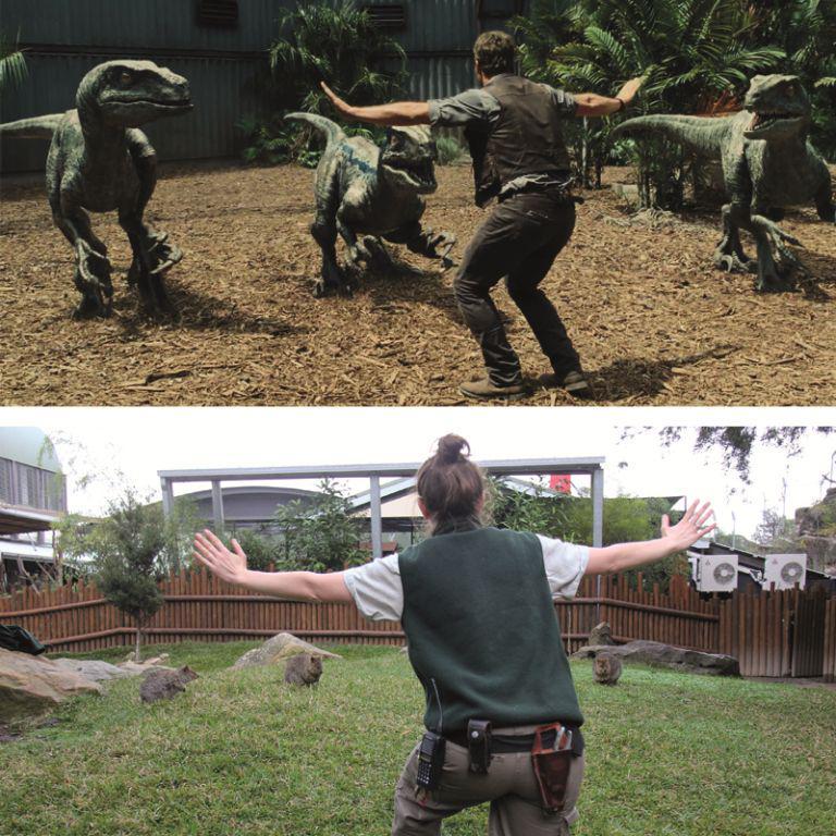 Cười đau bụng với hình ảnh nhái phim Jurassic World của các nhân viên vườn thú - 77709