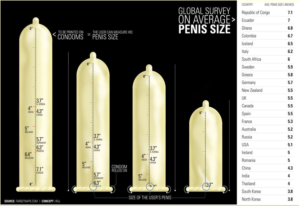What Is The Normal Penis Size