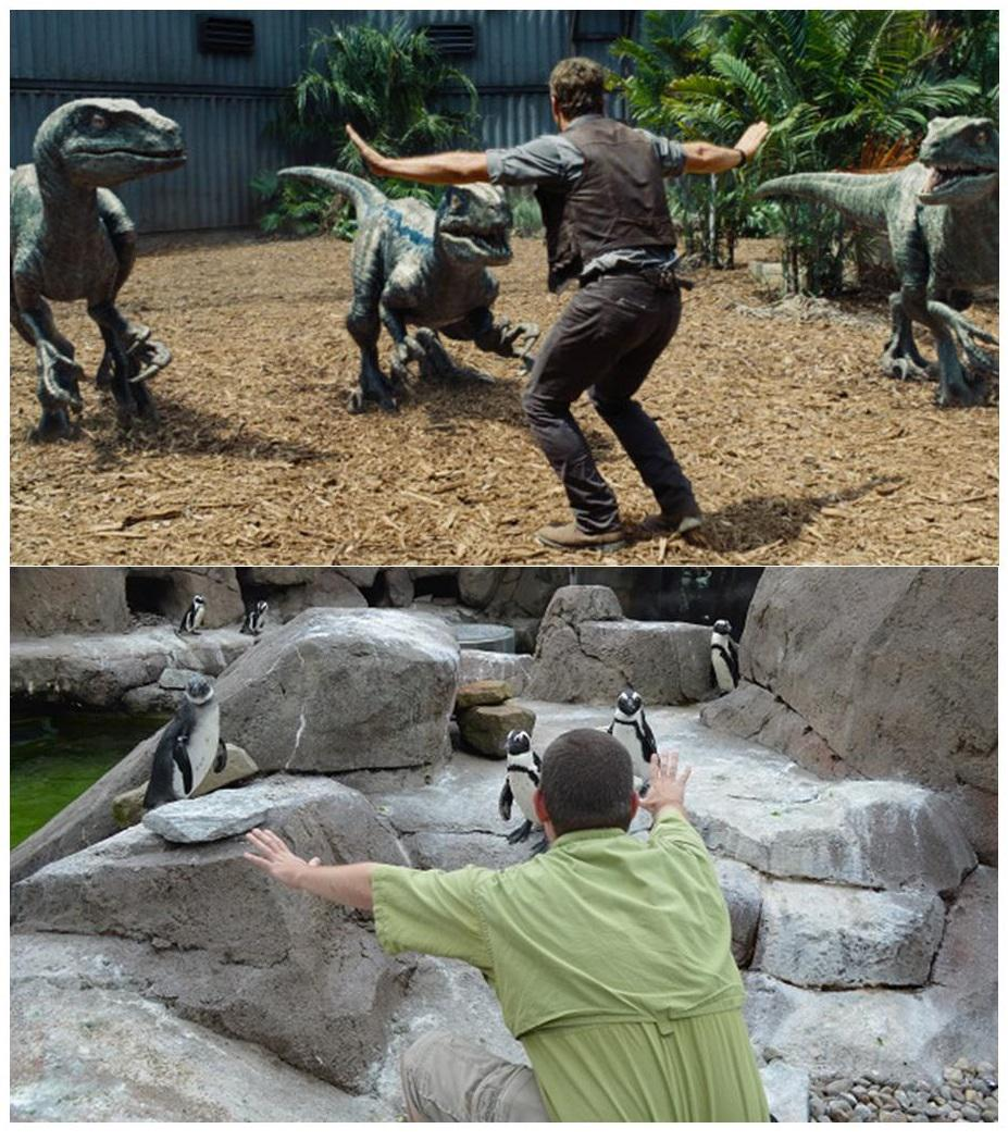 In solidarity with all of our fellow #JurassicZooKeeper-s! Veloci-penguins! #JurassicZoo #jurassicworld #Prattkeeping http://t.co/qDTnq58BVk