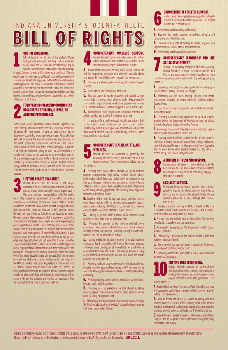 essay on the bill of rights