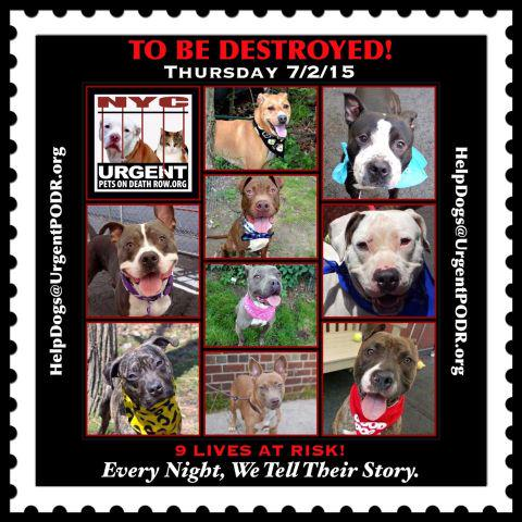 RT @UrgentPart2: TO BE DESTROYED 07/02/15 - http://t.co/6HYiqjJsQq http://t.co/miK7458bly