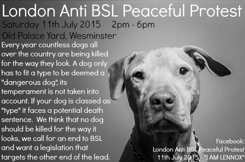London Anti BSL Protest. Sat July 11th 2015. Further Info: https://t.co/p9vjc3wFHw #LondonAntiBSL #EndBSL #IAMLennox http://t.co/nKLWbsMVOF