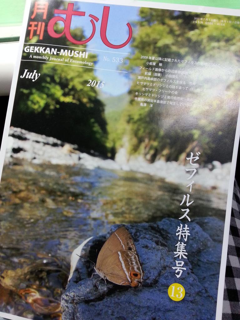 解禁!月刊むし-ゼフィルス特集号にて、私の名前がつきました百年に1度の発見と言われた「新種キリシマミドリ」について書かせて頂きました!この蝶と名前が変更された日本産キリシマについての日本語での出版物は初です!是非ご購入ください #昆虫 http://t.co/BP5jG68Yql
