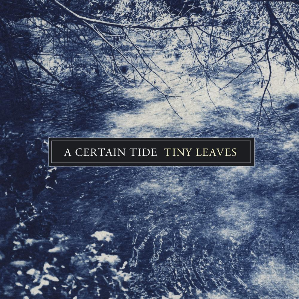Out today 'A Certain Tide' by Tiny Leaves - digipack sleeve CD + Digital available: http://t.co/cqcZOZ6q2t http://t.co/lJssrZbIii