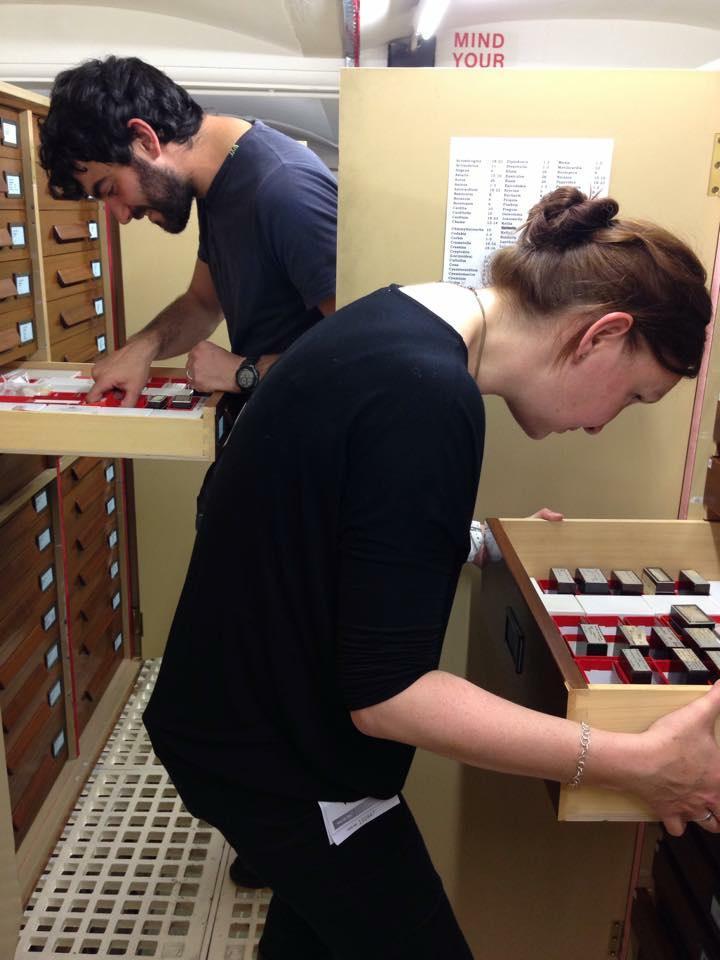 Our mollusc curators examining Monterosato type specimens @NHM_London #MolluscMonday http://t.co/eBwqruIYVo