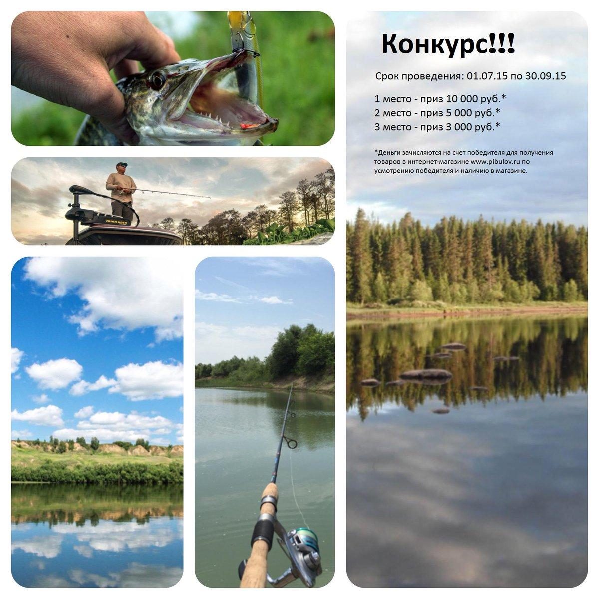 Отчеты о рыбалке питерский клуб