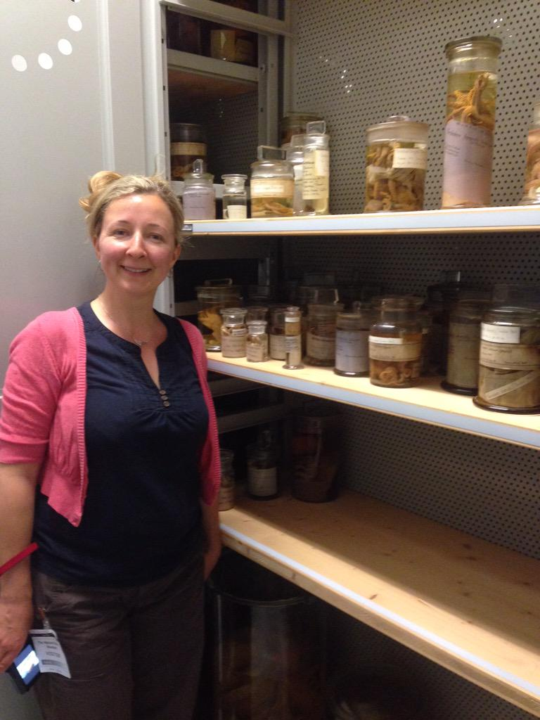 Curator Anna Holmes looking at the cephalopods @NHM_London #CephalopodWeek #MolluscMonday http://t.co/wEcSgecEcI