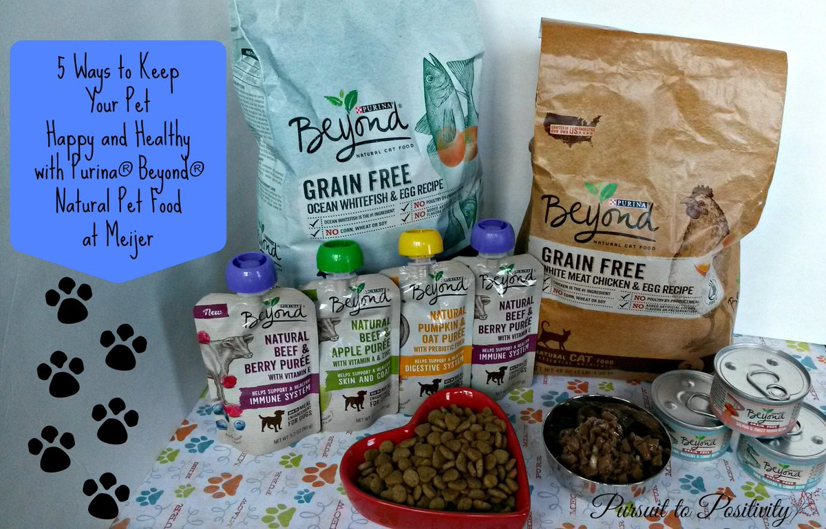 5 WAYS TO KEEP YOUR PET HAPPY AND HEALTHY WITH PURINA® BEYOND® http://t.co/mOGXCZTsUq #cbias #ad #beyondsummer http://t.co/FtNbM9ikVK