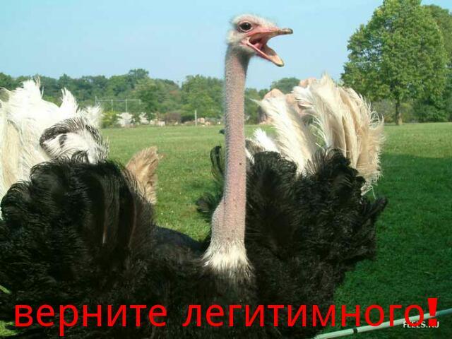 Яценюк приказал Минэкономики до конца года открыть торговые представительства Украины в США, Бельгии, Германии, Франции и Китае - Цензор.НЕТ 4189