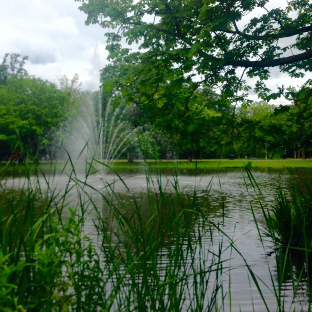 Vandaag verzorgen we een #NLP training in het Vondelpark