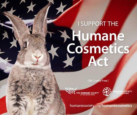 Be Cruelty free!! @HSUSNews support the Humane Cosmetics Act! http://t.co/Sz0Kqb07in