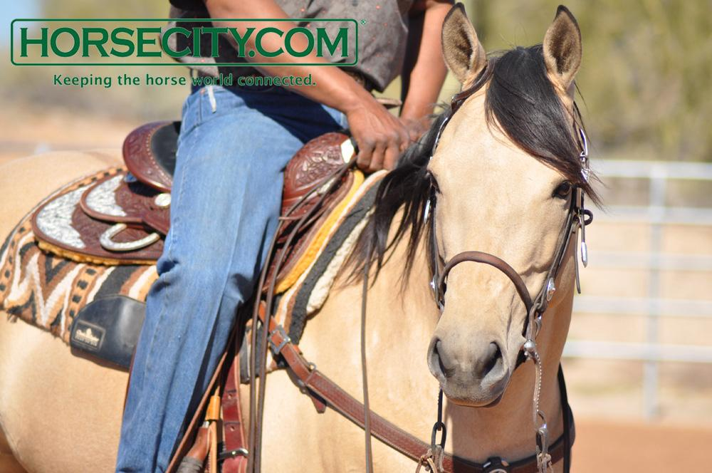 Do you know the signs of dehydration in your horse? http://t.co/2AAXv1nni3 #horsehealth #horses http://t.co/BQhEu31Iqq