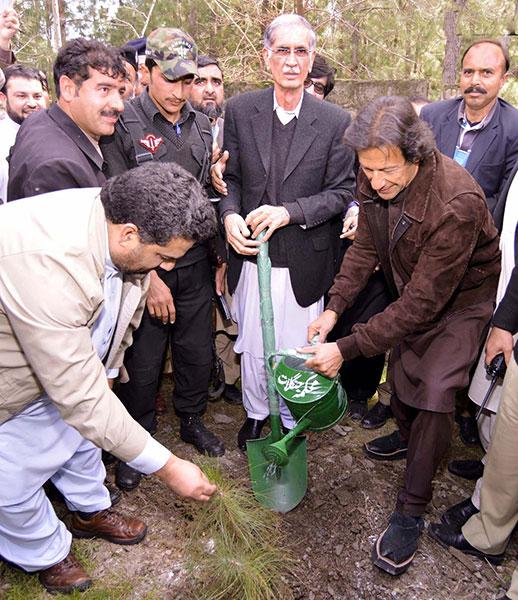 "Dr. SRG on Twitter: ""Imran Khan planting trees everywhere ..."