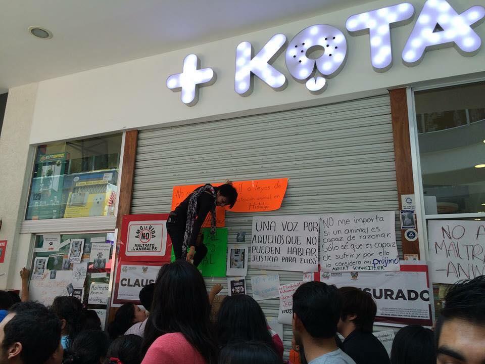 Así las cosas en Pachuca. #MaskotaMaltrataAnimales #MaskotaPachuca http://t.co/tpuBxQKvQy