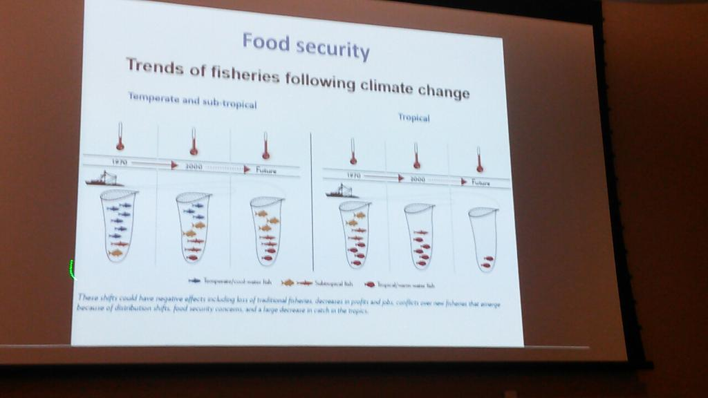 Trends of fisheries following #climatechange presented by Franck Courchamp #frenchamericanclimatetalks http://t.co/zcTByyUsMn