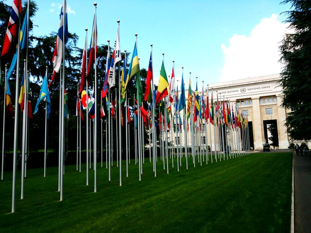 Thumbnail for 29th regular session of the UN Human Rights Council (15 June to 3 July 2015)