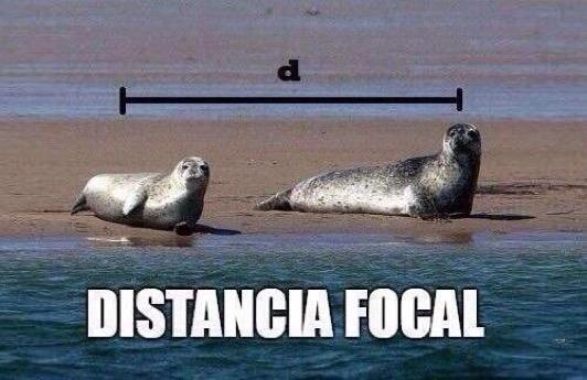 Siempre me costó entender eso de la distancia focal #microMOOC :-) http://t.co/sAqNVNoBki