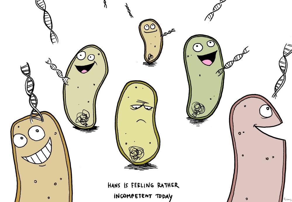 Transformación bacteriana: ¿Qué es una bacteria competente? #microMOOC :-) http://t.co/TmFuNB0rvw