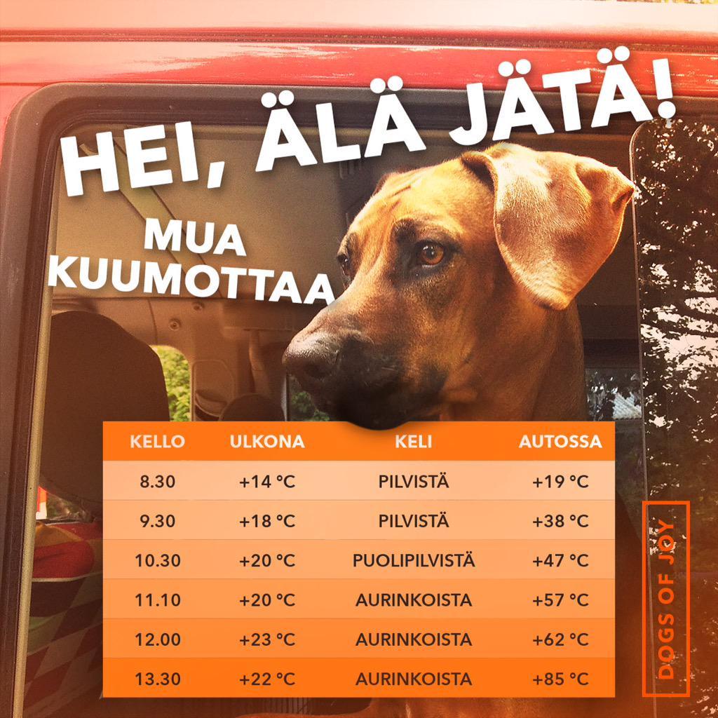 """Eliisa Kuusela a Twitter: """"Älä jätä koiraa tai lasta kuumaan ..."""