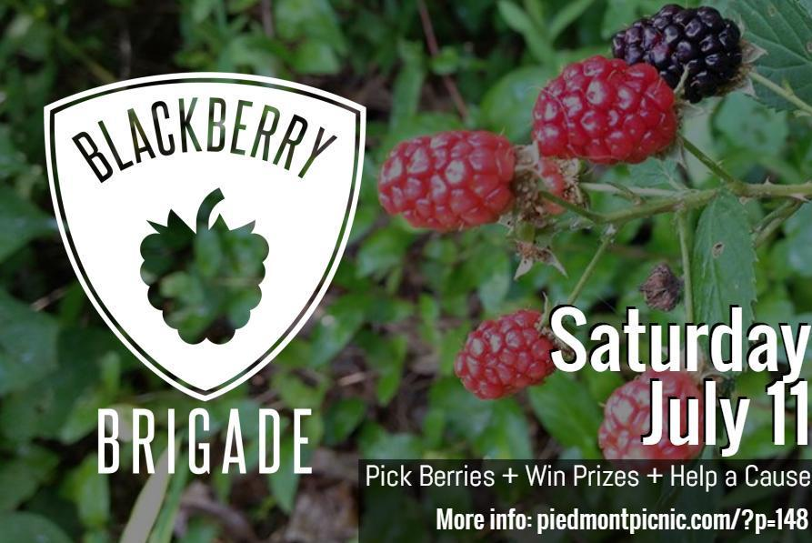 Pick berries. Win prizes. Help a cause! @comm_food_lab @commonrootschef http://t.co/xb5W0GT4oN http://t.co/N2qcf05OCM