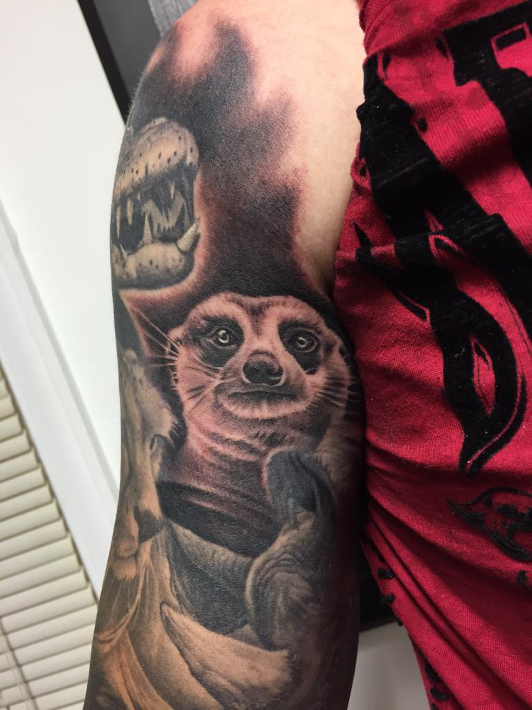 Brian barczyk on twitter dropped this little meerkat for Brian barczyk tattoo