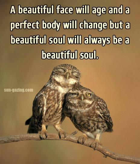 "Beautiful Soul Quotes Endearing Wright Thurston On Twitter ""a Beautiful Soul.10Millionmiler"