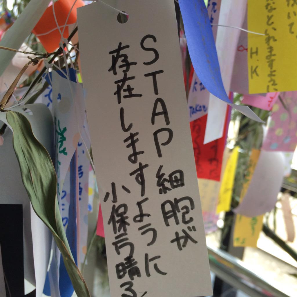 星に願い? http://t.co/wXIXA8IXEP