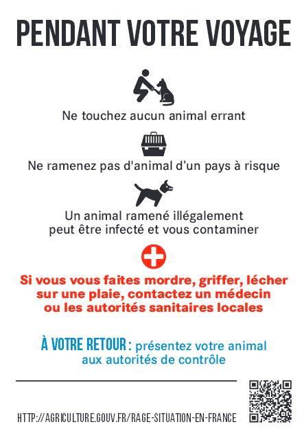 [#voyages] Voyager avec un #animal de compagnie > #conseils cc @ConseilsVoyages http://t.co/sP6QHdqmXQ … #GareALaRage http://t.co/Wm93vxtigZ