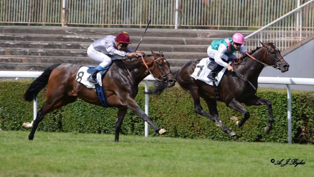 Treve – Grand Prix De Saint-Cloud 2015