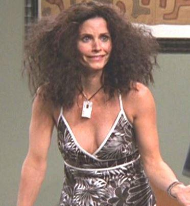 """Résultat de recherche d'images pour """"monica friends hair humidity"""""""