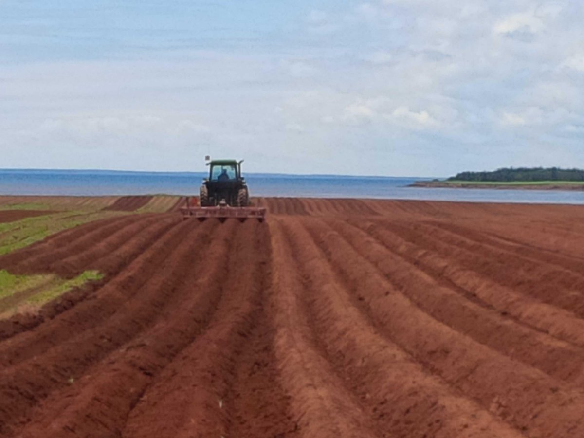 Some days the views are hard to take. Just kidding #PEI #peipotatoes #reddirt #countryliving #farmher http://t.co/Zk63jZ3kT4