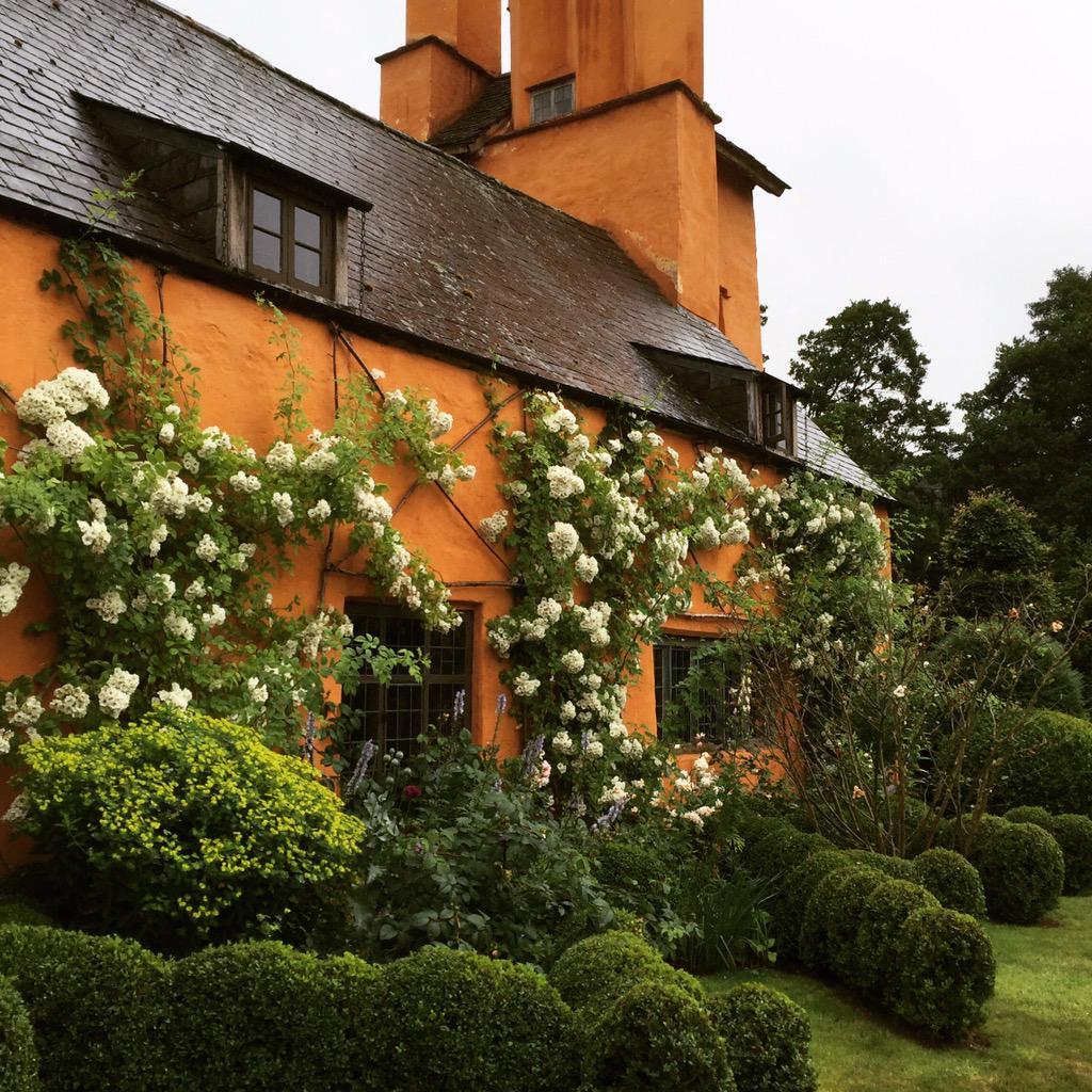 Arne Maynard Garden Design On Twitter Rose Astra Desmond At Allt