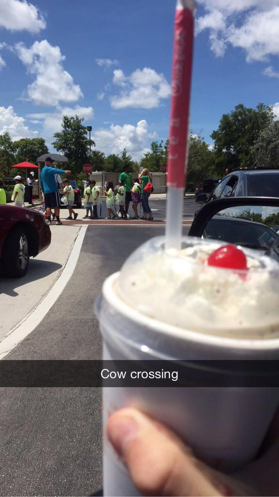 Just saw a camp of over 50 students @ChickfilA and they were all dressed as cows. Chick-fil-A made my day. http://t.co/l1umDNrjto