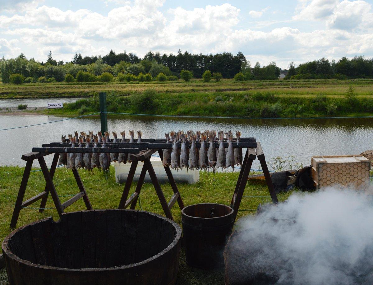 Smoking the haddock (Arbroath Smokies) at the Scottish Game Fair.   @ScotGameFair @SconePalace http://t.co/jjvjUn8gx4