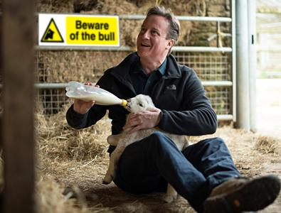 Is David Cameron a moron from the outer reaches of the universe? (Part 2) - Page 11 CJAqZboW8AAOTt8