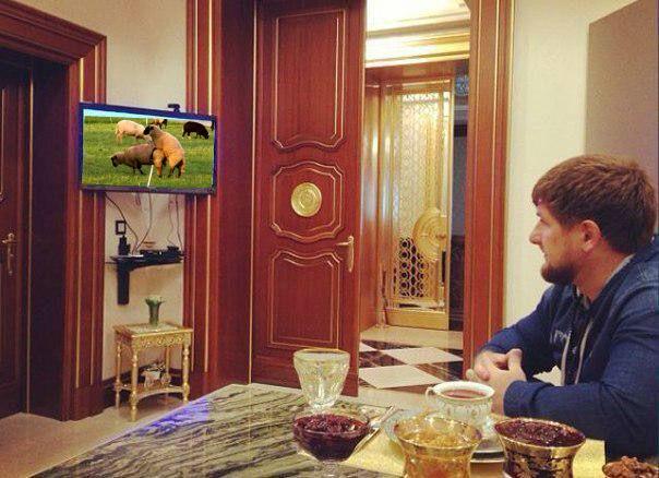 Чубаров обсудил с еврокомиссаром Муйжниексом права крымскотатарского народа в оккупированном Крыму - Цензор.НЕТ 3903