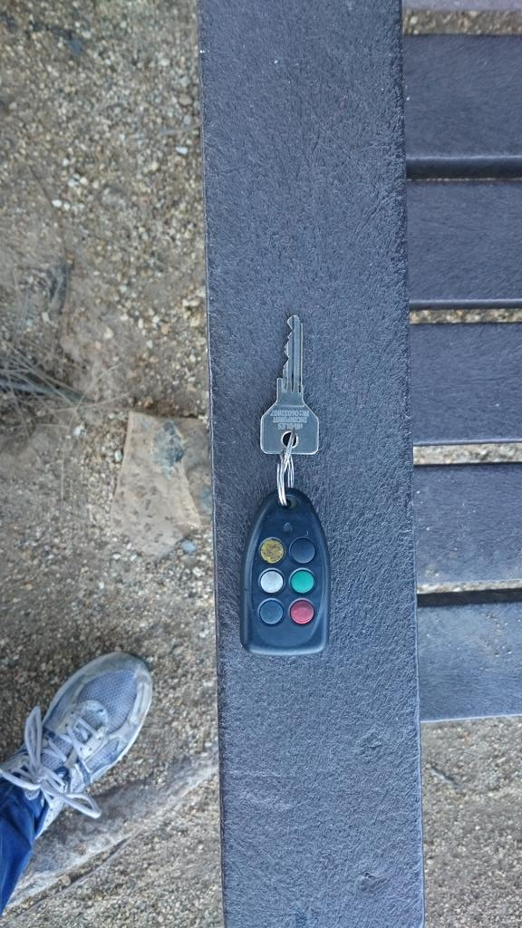 Key found on lions head. At pine trees clump on bench. Please share http://t.co/xzM9KubxSP