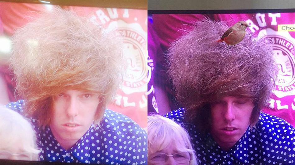 RT @mashable: The Internet is going wild for this Wimbledon spectator's epic hairdo: http://t.co/8uXCRXhCUi http://t.co/dKao8NPYAv
