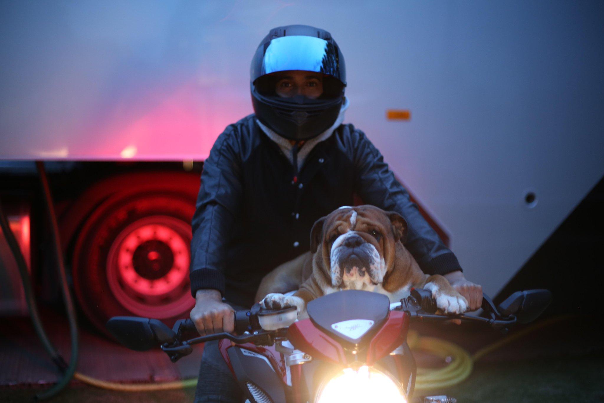 Roscoe Knievel and I going for a ride!! 😂😂😂 #BestDogs #bestbuddy #englishbulldog #RoscoeHam http://t.co/nWZ9YU0AjC