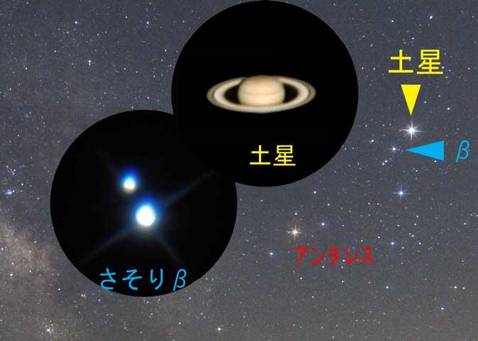 今シーズンの土星